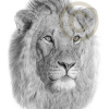 In our culture every clan has a totem and the totem of our clan is the lion