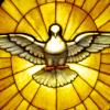 holy spirit/G.F.Bernini